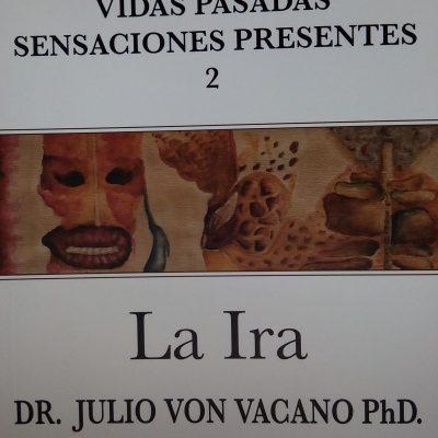 La Ira - Julio Von Vacano